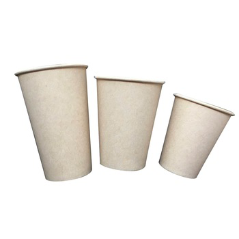 Disposable PLA Sugarcane Paper Cup
